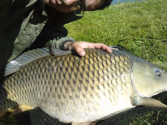 carpe 14 kg été2013 (3)